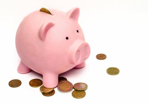 Namenitev dela dohodnine za MCI