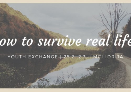 Mladinska izmenjava: How to survive real life?
